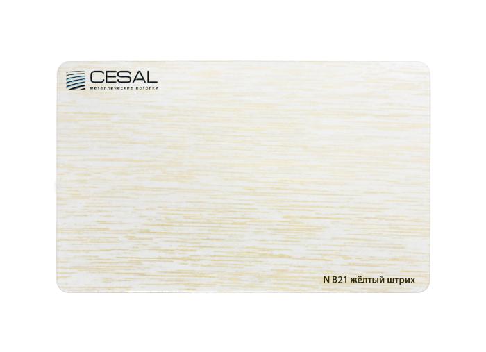 Рейка Cesal B21. Желтый штрих