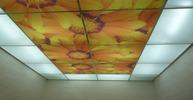 Фотопотолок с акрилом в ванную комнату. Цветы