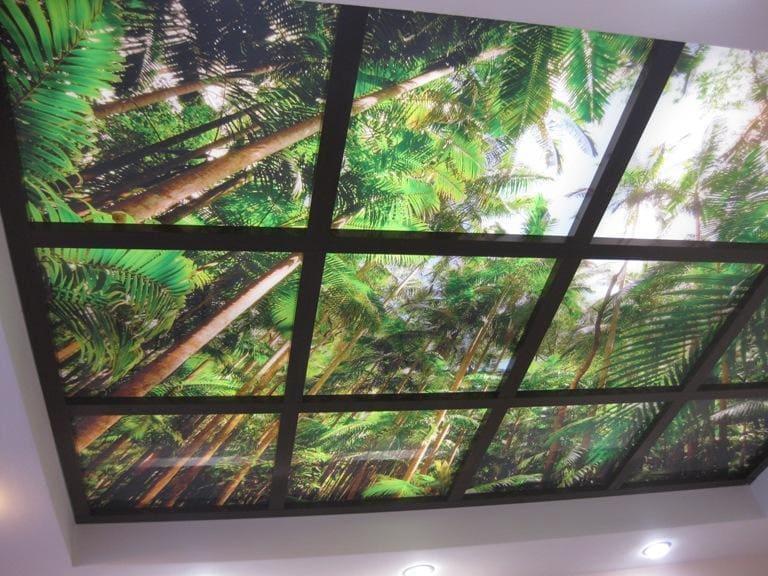 единственное его стеклянный потолок с фотопечатью клубникой